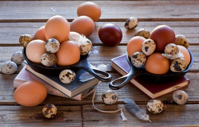 Как происходит эко с донорской яйцеклеткой